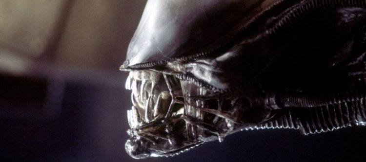 alien xenomorphs